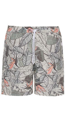 Onia Charles 7 Palm-Print Swim Shorts