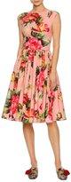 Dolce & Gabbana Cap-Sleeve Floral-Print Poplin Dress, Pink Pattern