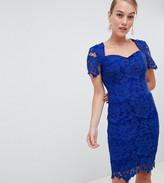 Paper Dolls Petite sweetheart crochet lace pencil dress in bright blue