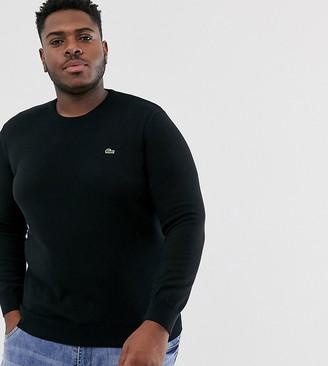 Lacoste logo crew neck cotton knit jumper in black
