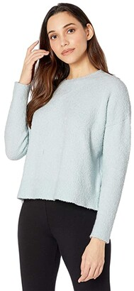 Eileen Fisher Boxy Crew Neck Top (Clearwater) Women's Clothing