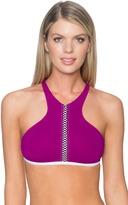 Sunsets Swimwear - Hollywood Hi-Neck Bikini Top 65TFOXG