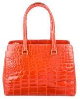 Saks Fifth Avenue Alligator Handle Bag