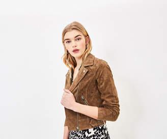 Oasis Suede Biker Jacket