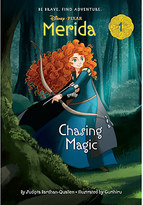 Disney Merida 1: Chasing Magic Book
