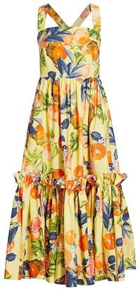 Cara Cara Julia Print Apron Fit & Flare Dress