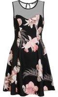 Dorothy Perkins Womens *Quiz Black Floral Mesh Dress- Black
