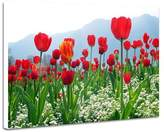 CU.RONG Red Tulip Field Of Flowers,Prints Artwork on Wood Board,Frameless Painting,Art Posters,Home wall Decor