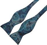 Alizeal Men's Paisley Jacquard Woven Self Tie Bow Tie