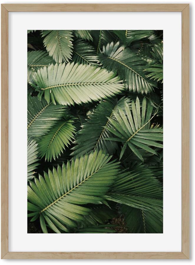 H&M Botanical Jungle 2 Art Print