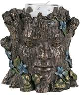Summit Greenman Holder-Spring - Collectible Figurine Statue Sculpture Figure