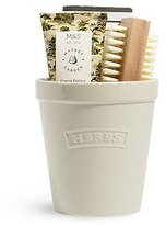Marks and Spencer Plant Pot Gift Set