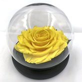 Sweet The glass dome eternal rose,Gift for Valentine's Day,Mother's Day,Birthday (Yellow)