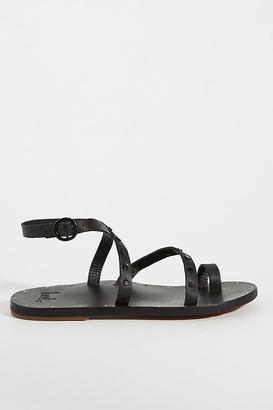 beek Lorikeet Gladiator Sandals By in Black Size 6