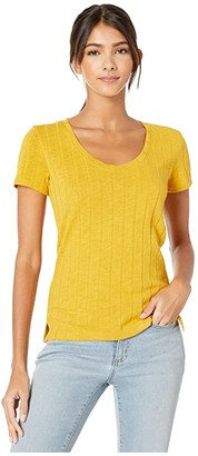 Sanctuary Ribbed Ruby Scoop Tee (Citrine) Women's Clothing