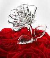Waterford Crystal Fleurology Rose Flower