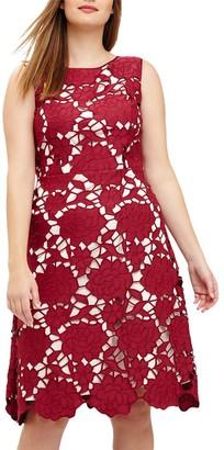 Studio 8 Melody Dress, Berry
