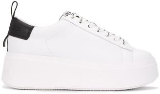 Ash Moon flatform sneakers