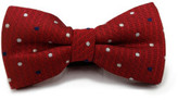 Laramy Boys Bow Tie