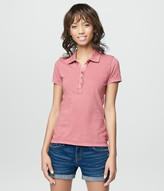 Prince & Fox Solid Jersey Polo