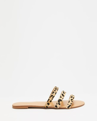 Billini - Women's Brown Strappy sandals - Matola - Size 6 at The Iconic