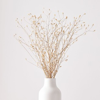 west elm Dried Flax Bunch