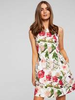 Portmans Blooms In Spring Dress
