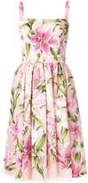 Dolce & Gabbana lily-print flared dress