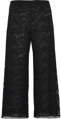 ADAM by Adam Lippes Cotton-blend Corded Lace Culottes