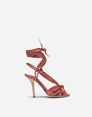 Dolce & Gabbana Sandals In Python With Heel In Wicker