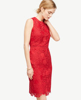 Ann Taylor Petite Spring Lace Sheath Dress