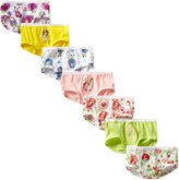 Fruit of the Loom Strawberry Shortcake 7 Pack Girls Brief Style Panties for girls