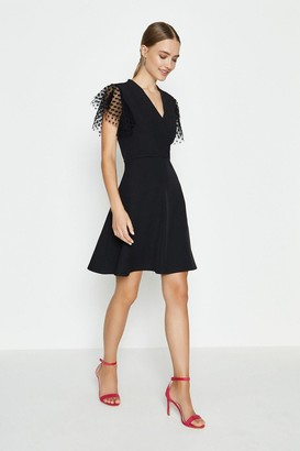 Coast Polka Dot Mesh Short Sleeve Skater Dress