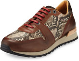 Robert Graham Amazon 4 Snake-Embossed Sneaker, Brown/Taupe