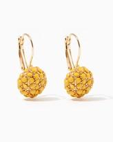 Charming charlie Clustered Gems Drop Earrings