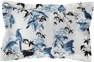 Roberto Cavalli Birds Ramage King Shams, Set of 2