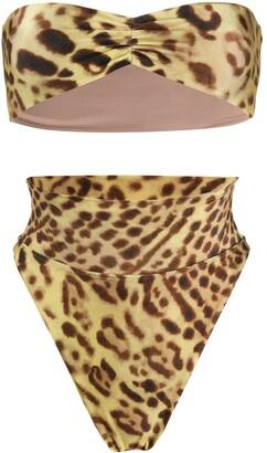 Adriana Degreas Leopard-Print Bikini Set