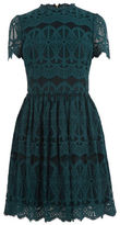 "Oasis LACE SKATER DRESS [span class=""variation_color_heading""]- Teal Green[/span]"