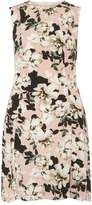 Dorothy Perkins Blush Floral Fit & Flare Dress