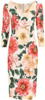 Dolce & Gabbana Camellia Print Midi Dress