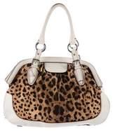 Dolce & Gabbana Leather-Trimmed Printed Shoulder Bag