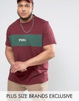 Puma Plus Panel T-shirt In Burgundy Exclusive To Asos 57531102