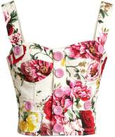 Dolce & Gabbana Floral-print bustier cropped top