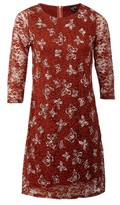 Dorothy Perkins Womens Izabel London Red Butterfly Lace Shift Dress, Red