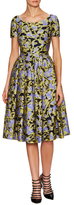 Mary Katrantzou Jacquard Fit And Flare Dress