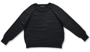 Karen Scott Crewneck Cotton Sweater, Created for Macy's