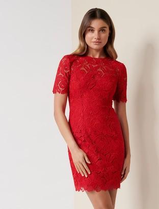 Ever New Tayla Lace Mini Dress