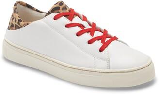 The Flexx Sneaky Cat Sneaker