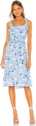 MISA Primrose Dress