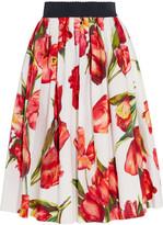 Dolce & Gabbana Floral-print Cotton-poplin Skirt - Red